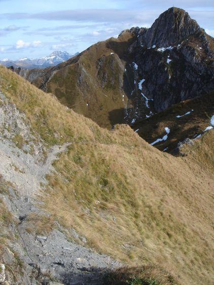 Foto: Manfred Karl / Wander Tour / Auf dem Hias Wallner Steig zum Haßeck / Die steilen Grashänge erfordern bei Nässe oder Schnee große Vorsicht! / 14.06.2008 16:35:21