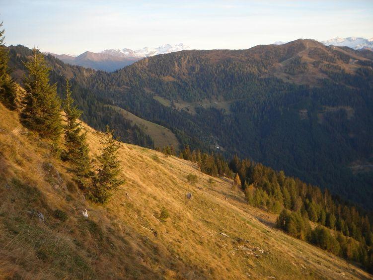 Foto: Manfred Karl / Wander Tour / Auf dem Hias Wallner Steig zum Haßeck / Herbstliche Abendsonne beim Abstieg zum Hauserbauern, links im Bild das Arltörl / 14.06.2008 16:22:04