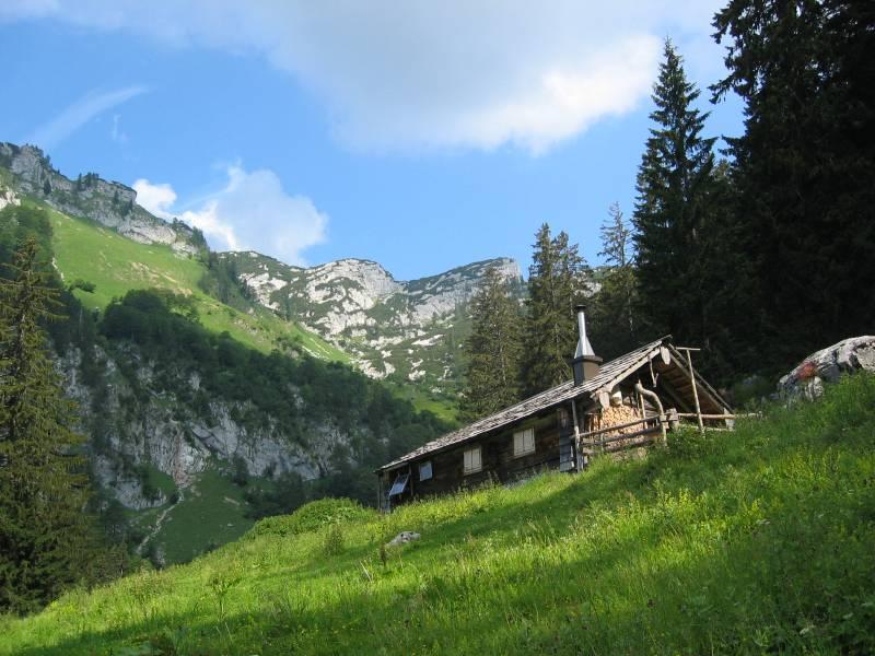 Foto: pepi4813 / Wander Tour / Von der Rettenbachalm zum Karkogel / Obere Karalm / 14.06.2008 20:26:40