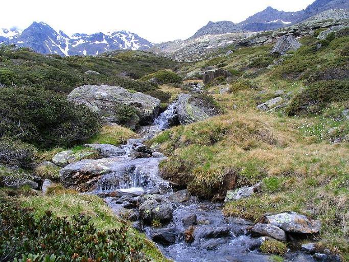 Foto: Andreas Koller / Wander Tour / Über die Pilsbergalm auf den Soyspitz (3030 m) / Blick auf den Ultner Kamm / 17.06.2008 17:17:38