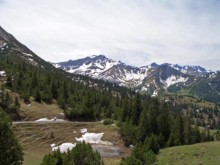 Foto: vince 51 / Wander Tour / Von Malbun auf den Schönberg / 18.06.2008 23:25:49