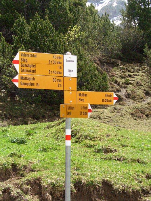 Foto: vince 51 / Wander Tour / Von Malbun auf den Schönberg / 18.06.2008 23:25:38