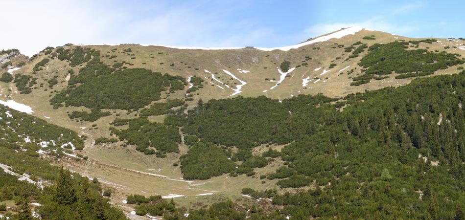 Foto: vince 51 / Wander Tour / Von Malbun auf den Schönberg / 18.06.2008 23:20:45
