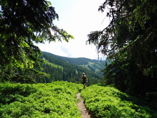 Foto: Günter Siegl / Wander Tour / Dürrenschöberl - Überschreitung / 28.06.2013 21:41:03