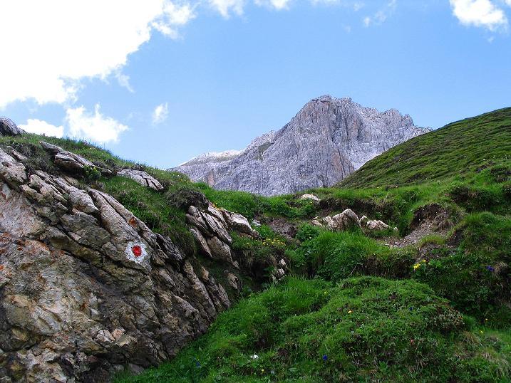 Foto: Andreas Koller / Wander Tour / Tappenkarseehütte - Weißgrubenkopf - Franz Fischerhütte (2369m) / Guter Steig zum Weißgrubenkopf / 24.06.2008 16:28:21