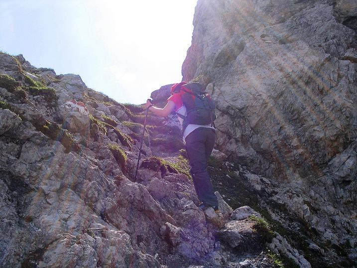 Foto: Andreas Koller / Wander Tour / Tappenkarseehütte - Weißgrubenkopf - Franz Fischerhütte (2369m) / Rassiges Steiglein am Weißgrubenkopf / 24.06.2008 16:17:22