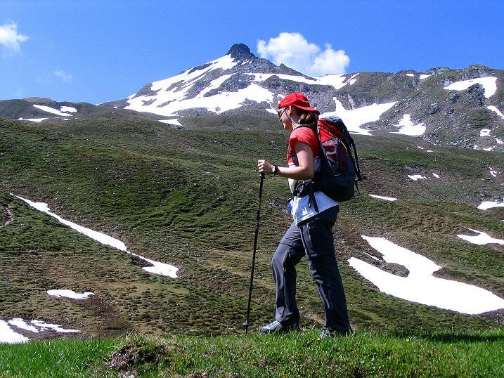 Foto: Andreas Koller / Wander Tour / Glingspitze und Rifflgrat (2433 m) / Anstieg im Tappenkar mit Blick auf die Glingspitze / 24.06.2008 18:12:25