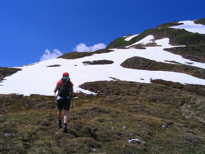 Foto: Andreas Koller / Wander Tour / Glingspitze und Rifflgrat (2433 m) / Nahe scheint das Gipfelkreuz der Glingspitze / 24.06.2008 18:10:16