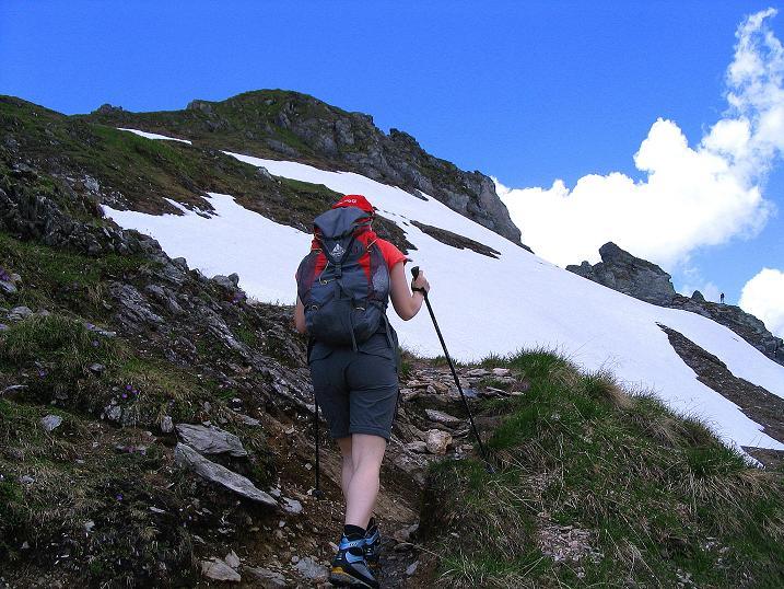 Foto: Andreas Koller / Wander Tour / Glingspitze und Rifflgrat (2433 m) / Anstieg in der O-Flanke / 24.06.2008 18:09:51
