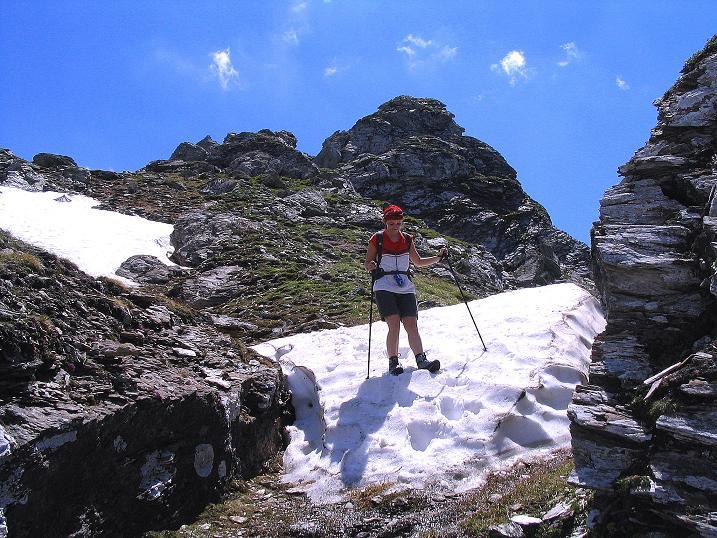 Foto: Andreas Koller / Wander Tour / Glingspitze und Rifflgrat (2433 m) / Bizarre Felstürmchen am Glingspitz N-Grat / 24.06.2008 18:04:46