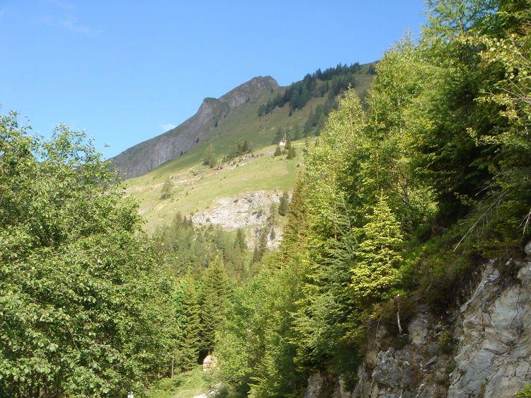 Foto: Manfred Karl / Mountainbike Tour / Aus dem Großarltal auf die Viehhausalm / Höllwand / 26.06.2008 18:08:52