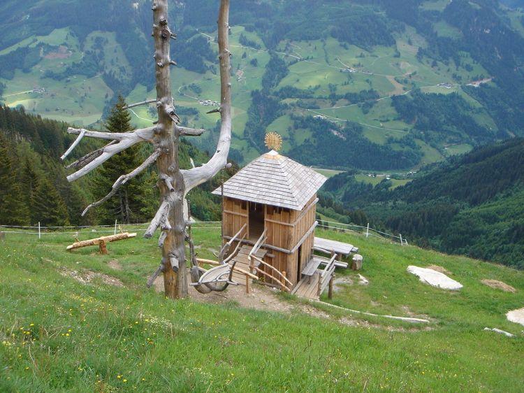 Foto: Manfred Karl / Mountainbike Tour / Aus dem Großarltal auf die Viehhausalm / Kinderfreundliche Alm / 26.06.2008 18:07:53