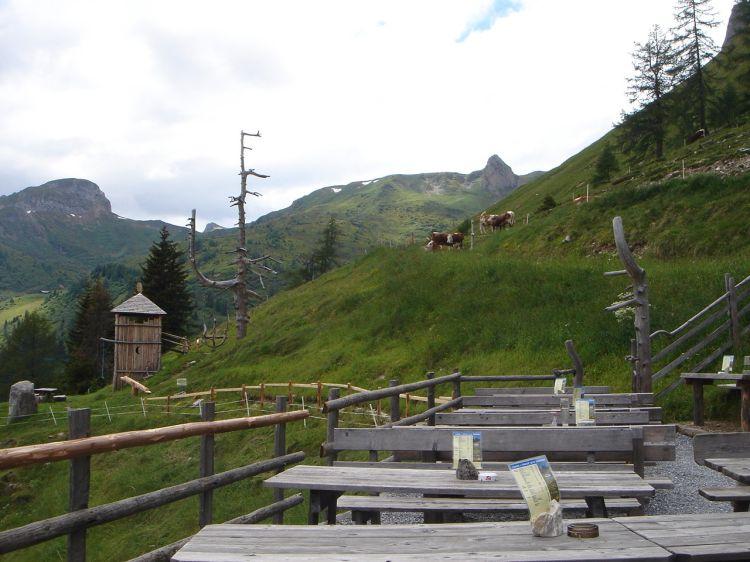 Foto: Manfred Karl / Mountainbike Tour / Aus dem Großarltal auf die Viehhausalm / Platz genug - und fürs leibliche Wohl wird auch gesorgt. / 26.06.2008 18:07:28