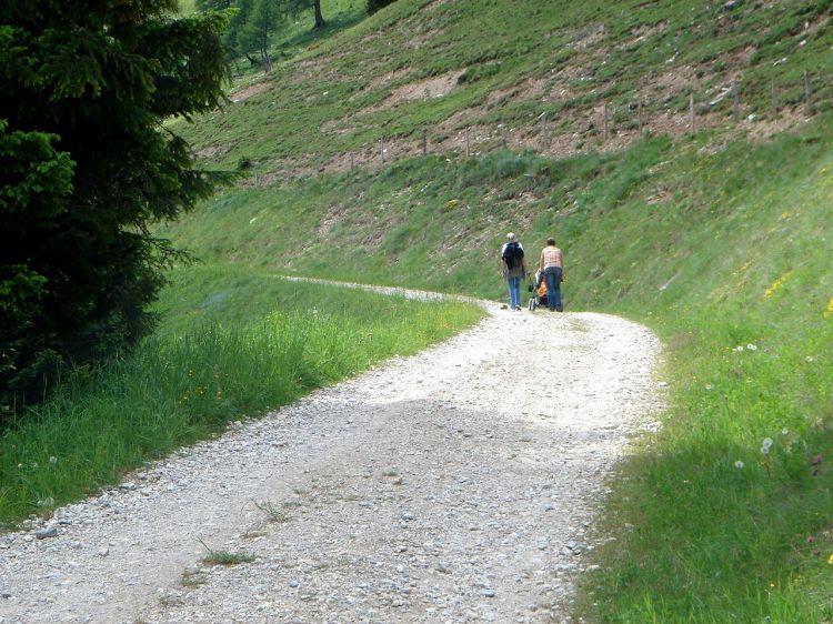 Foto: Manfred Karl / Mountainbike Tour / Aus dem Großarltal auf die Viehhausalm / So geht´s auch: Die Straße zur Viehhausalm ist sogar kinderwagentauglich ;-) / 26.06.2008 18:05:29