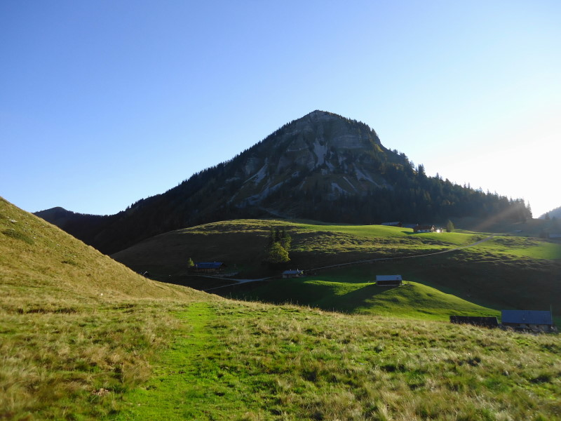 Foto: Günter Siegl / Wander Tour / Genner - Runde / Genneralm und Holzeck / 26.09.2014 18:32:35