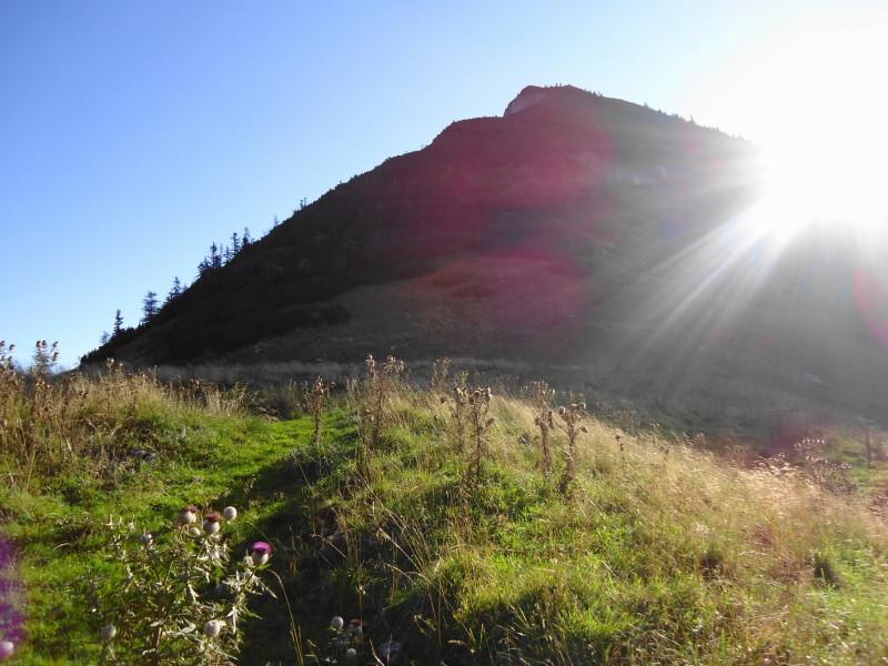 Foto: Günter Siegl / Wander Tour / Genner - Runde / Gipfelaufbau Gennerhorn / 26.09.2014 18:33:30