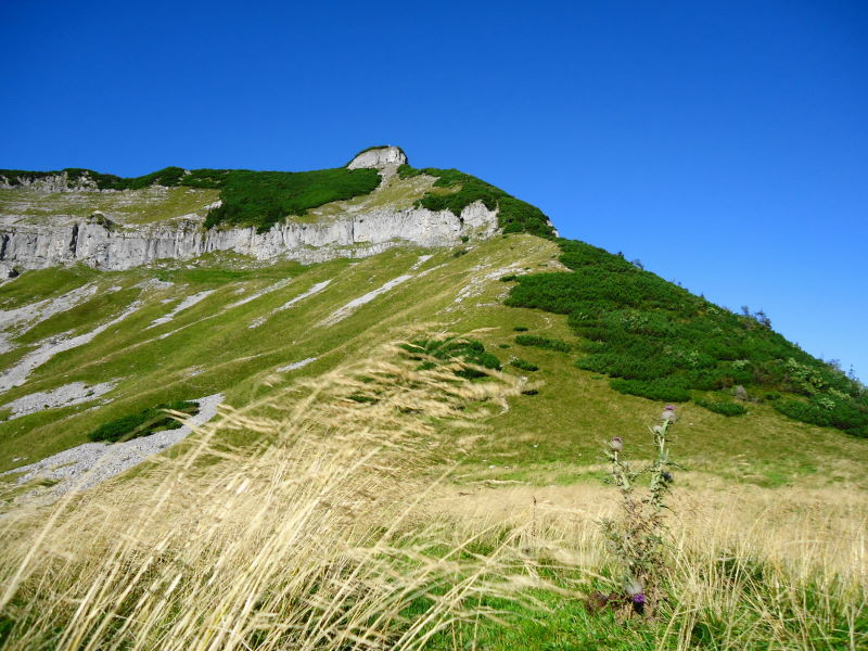 Foto: Günter Siegl / Wander Tour / Genner - Runde / Gipfelaufbau Gruberhorn / 26.09.2014 18:35:16