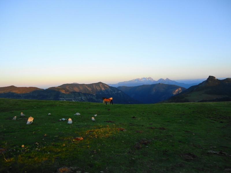 Foto: Günter Siegl / Wander Tour / Genner - Runde / little Stonehenge, die Liebenden, der Dachtein / 26.09.2014 18:41:57