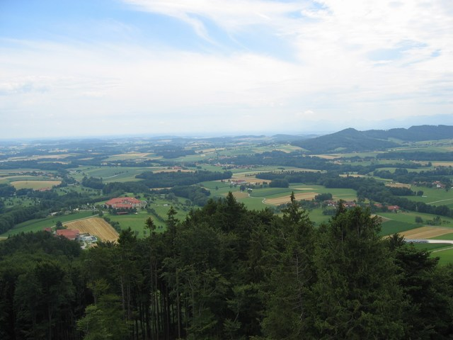 Foto: Jürgen Lindlbauer / Mountainbike Tour / Von Pichl bei Wels in den Hausruckwald und retour / 13.07.2008 12:41:44