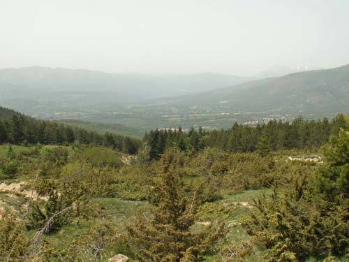 Foto: lobivia / Wander Tour / Wandertage Abruzzen: Etappe 1  Amatrice - Campotosto / Blick zurück nach Amatrice / 11.07.2008 08:54:32