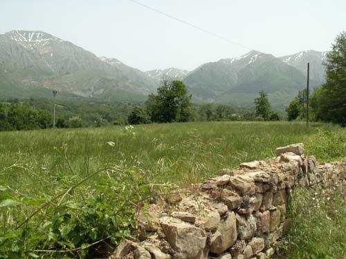 Foto: lobivia / Wander Tour / Wandertage Abruzzen: Etappe 1  Amatrice - Campotosto / zwischen Amatrice und San Cipriano / 11.07.2008 08:54:00