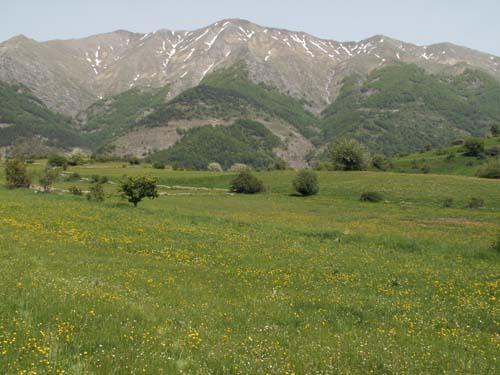 Foto: lobivia / Wander Tour / Wandertage Abruzzen: Etappe 1  Amatrice - Campotosto / Rifugio delle Serre (links am Bildrand) / 11.07.2008 08:55:31