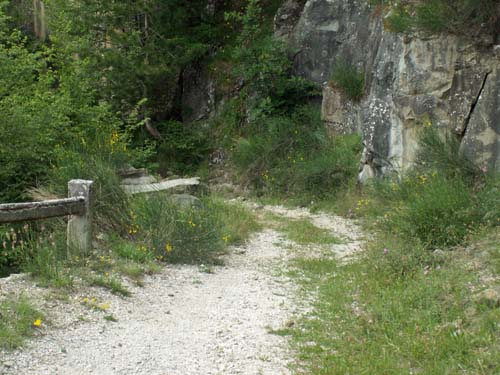 Foto: lobivia / Wander Tour / Wandertage Abruzzen: Etappe 2 Campotosto - Paladini / zwischen Tottea und Paladini / 11.07.2008 09:17:21