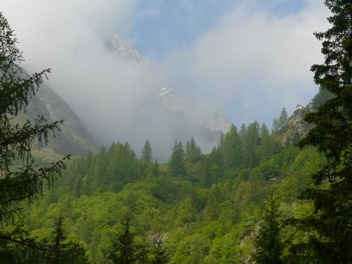 Foto: Karl Mätzler / Wander Tour / Grande Traversata delle Alpi (GTA), Etappe 7, Rima - Pedemonte / Aufstieg von Rima zum Colle Mud / 15.07.2008 23:51:24