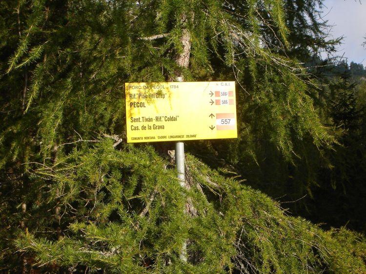 Foto: Manfred Karl / Klettersteig Tour / Civetta Überschreitung - Via ferrata degli Alleghesi und Abstieg über Via ferrata Attilio Tissi / Man folgt dem Weg Nr. 557 zum Einstieg des Alleghesi Klettersteiges / 19.07.2008 14:41:43