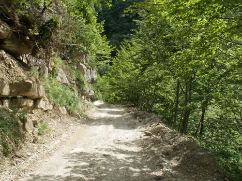 Foto: lobivia / Wander Tour / Wandertage Abruzzen: Etappe 3 Paladini - Pietracamela / zwischen Nerito und der ersten Bachüberquerung / 20.07.2008 14:01:04
