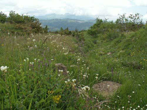 Foto: lobivia / Wander Tour / Wandertage Abruzzen: Etappe 3 Paladini - Pietracamela / kurz nach Prato Selva nach Bivio Sant'Onofrio / 20.07.2008 13:59:29