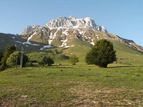 Foto: lobivia / Wander Tour / Wandertage Abruzzen: Etappe 4 Pietracamela - Campo Imperatore / Corno Piccolo / 21.07.2008 17:10:28