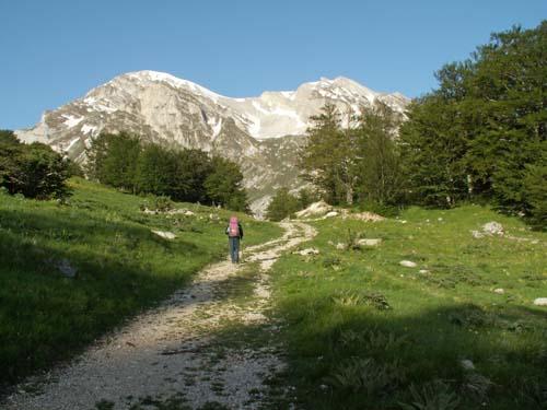 Foto: lobivia / Wander Tour / Wandertage Abruzzen: Etappe 4 Pietracamela - Campo Imperatore / kurz nach den Prati di Tivo / 21.07.2008 17:09:47