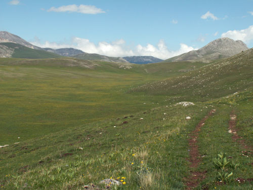 Foto: lobivia / Wander Tour / Wandertage Abruzzen: Etappe 5 Campo Imperatore - Castel del Monte / unterwegs zum Lago Racollo / 21.07.2008 18:47:25