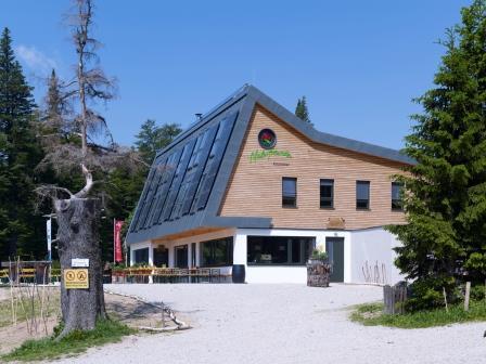Foto: Wolfgang Dröthandl / Wander Tour / Krummbachstein - Runde über den Gahns / Naturfreundehaus Knofeleben / 06.03.2015 07:46:49