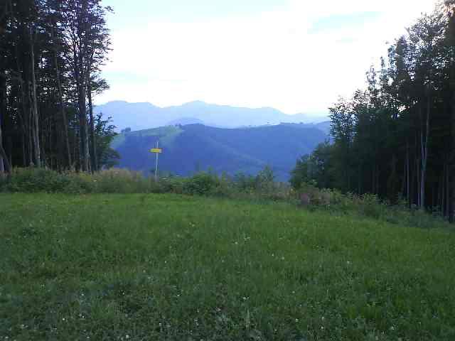 Foto: iron717 / Mountainbike Tour / Damberg Kriterium / Einfahrt in den Donwhill vom Schwarzberg, links neben dem gelben Schild  (oftmals stark verwachsen und von Dornenbüschen flankiert). / 07.09.2008 12:00:19
