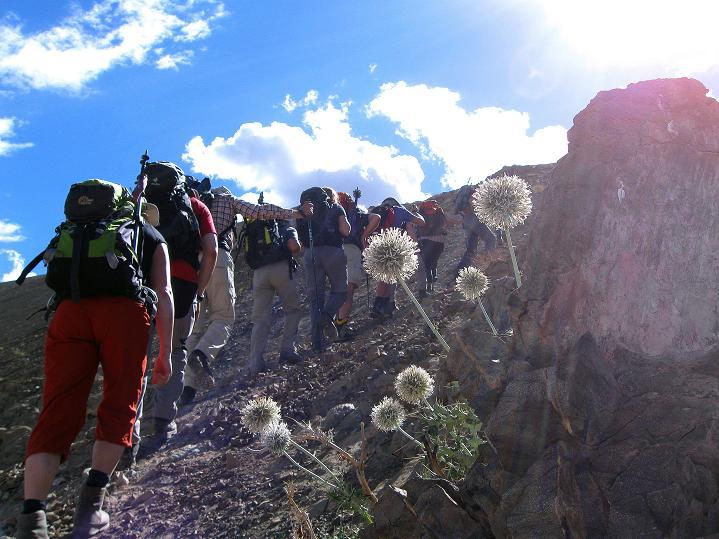 Foto: Andreas Koller / Wander Tour / Choklamsar Ri (4000m) - Akklimatisationstour über Leh / Aufstieg zum Choklamsar Ri  / 08.09.2008 23:48:58