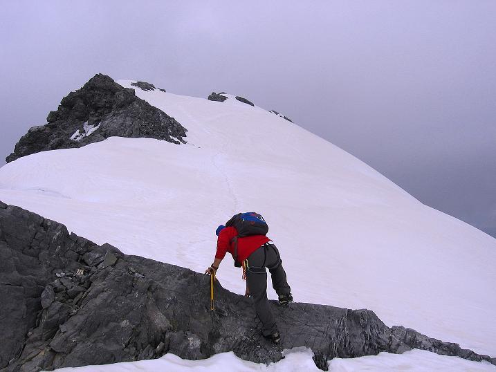 Foto: Andreas Koller / Wander Tour / Vom Monte Livrio auf die Hohe Schneide (3434m) / Am O-Grat dem Gipfel entgegen / 09.09.2008 23:09:30