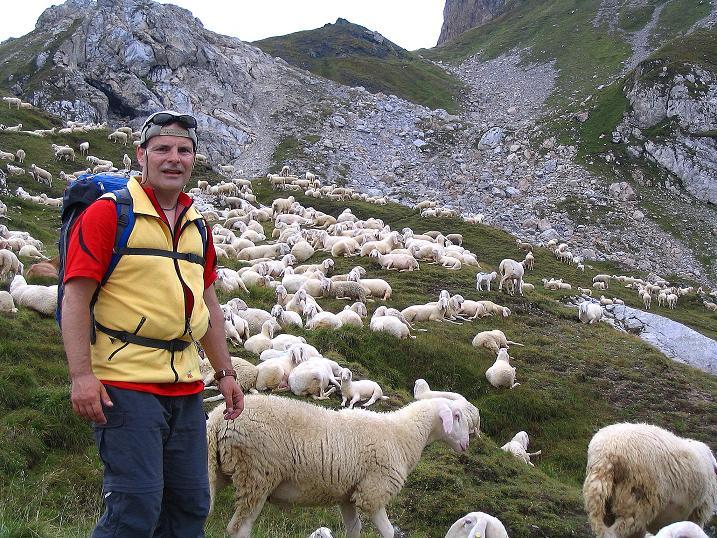 Foto: Andreas Koller / Klettersteig Tour / Via Sartor auf den Hochweißstein / Monte Peralba (2694m) / Man findet Freunde am Hochalpjoch / 10.09.2008 00:09:12