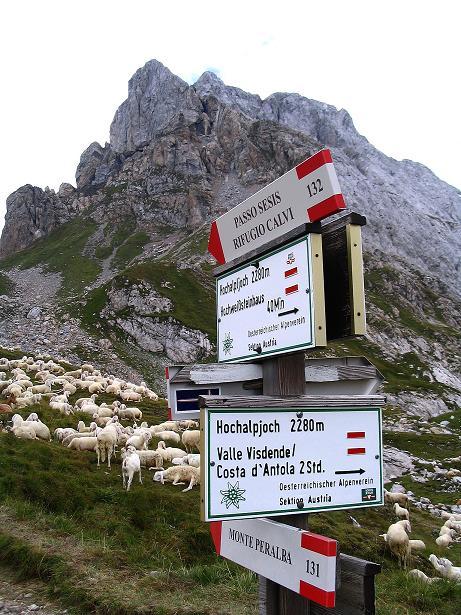 Foto: Andreas Koller / Klettersteig Tour / Via Sartor auf den Hochweißstein / Monte Peralba (2694m) / Wegweiser am Hochalpjoch / 10.09.2008 00:08:55
