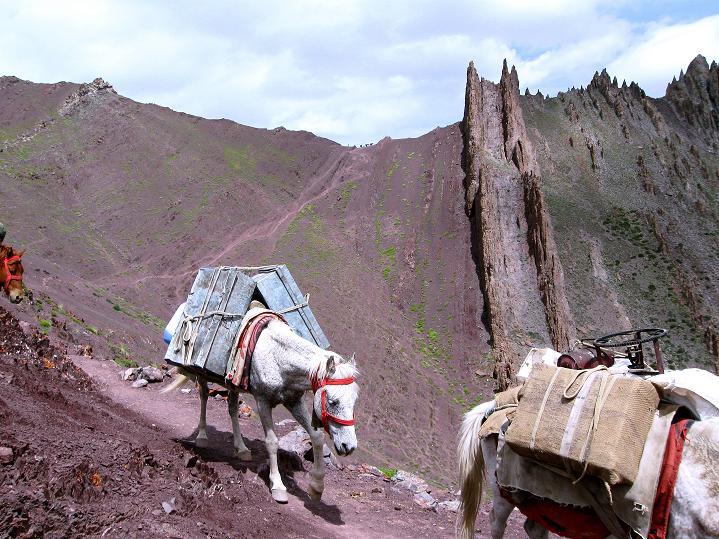 Foto: Andreas Koller / Wander Tour / Vom Stok Gompa auf den Stok Ri (5002m) / Blick vom Vorpass auf den Stok La / 10.09.2008 00:59:26