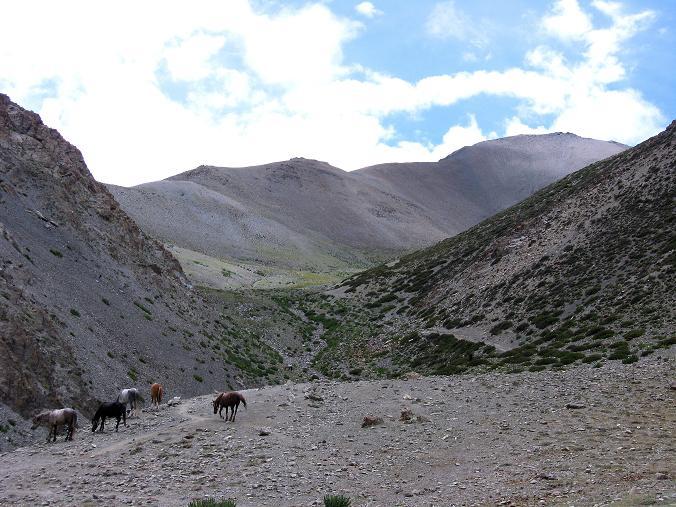 Foto: Andreas Koller / Wander Tour / Über den Ganda Ri (5113m) ins Markha Valley / Aus dem Tal erkennt man schon den Ganda Ri / 12.09.2008 00:19:44