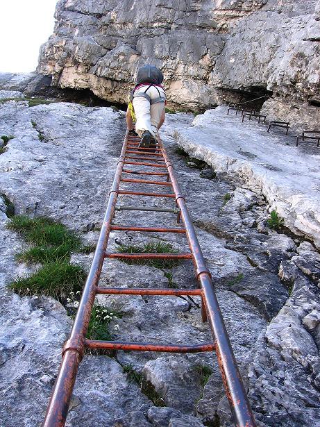 Foto: Andreas Koller / Klettersteig Tour / Alpspitze Ferrata und Überschreitung (2628m) / Leiter am Nordwandsteig / 12.09.2008 15:38:54