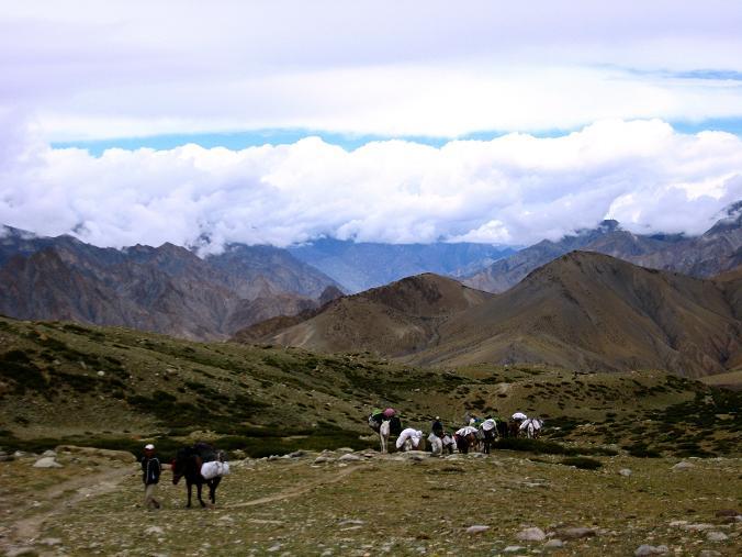 Foto: Andreas Koller / Wander Tour / Von Tachuntse auf den Nimaling Ri (5648m) / Im Nimaling-Hochtal gegen Zanskar Range / 14.09.2008 00:27:14