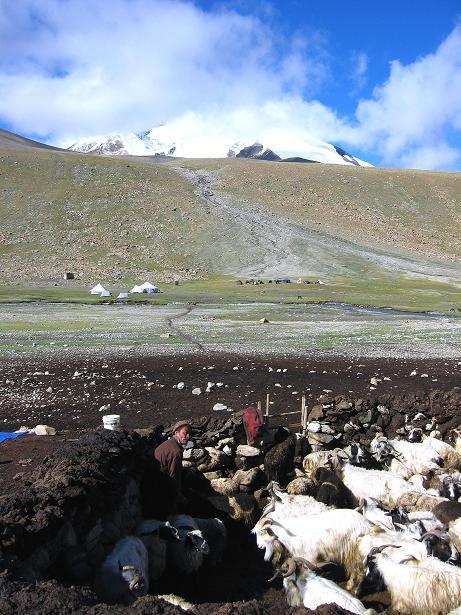 Foto: Andreas Koller / Wander Tour / Über Nimaling auf den Konmaru Ri (5446 m) / Almgebiet Nimaling / 15.09.2008 22:53:25