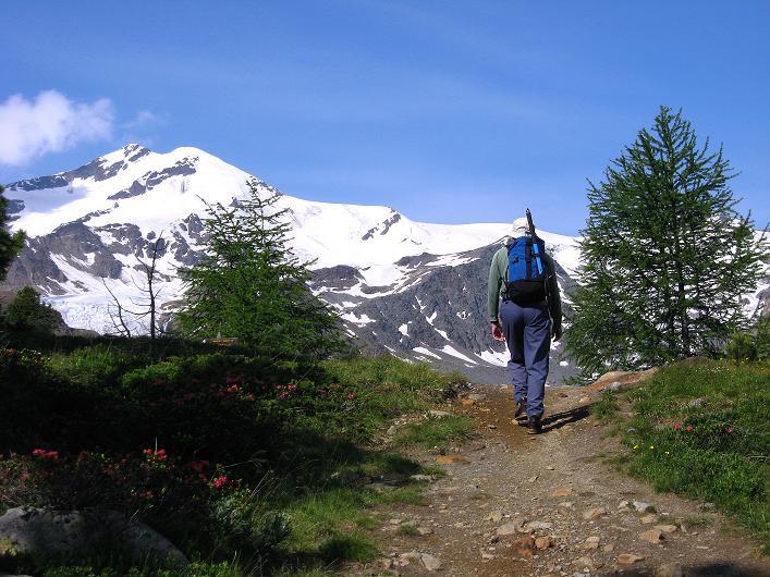 Foto: Andreas Koller / Wander Tour / Aus dem Martelltal auf die Köllkuppe (3330m)  / Die Zufallspitzen (3757 m) / 18.09.2008 21:53:09