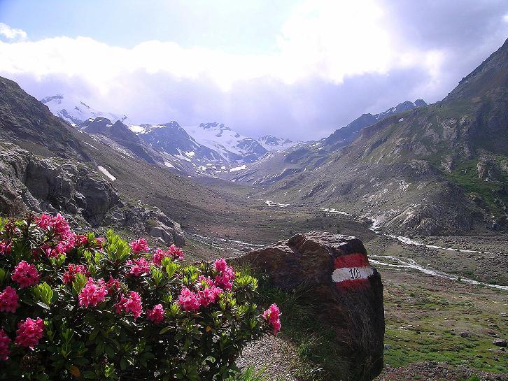 Foto: Andreas Koller / Wander Tour / Aus dem Martelltal auf die Köllkuppe (3330m)  / Im Talboden / 18.09.2008 21:28:42