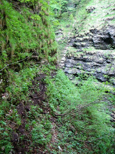 Foto: Manfred Karl / Klettersteig Tour / Klettersteig durch die Postalmklamm / Viel Erde und Feuchtigkeit ergeben eine rutschige Mischung / 23.09.2008 17:33:13