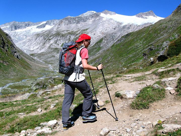 Foto: Andreas Koller / Wander Tour / Schwarze Wand und Hoher Zaun - stille Gipfeltour vom Defregger Haus (3507 m) / Der Großvenediger (3674 m) und seine Trabanten gesehen von einer Anhöhe oberhalb der Johannishütte / 24.09.2008 00:07:48