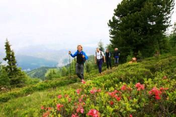 Foto: Kreischi / Wander Tour / 7 Gipfel Wanderung / 04.03.2009 12:48:39